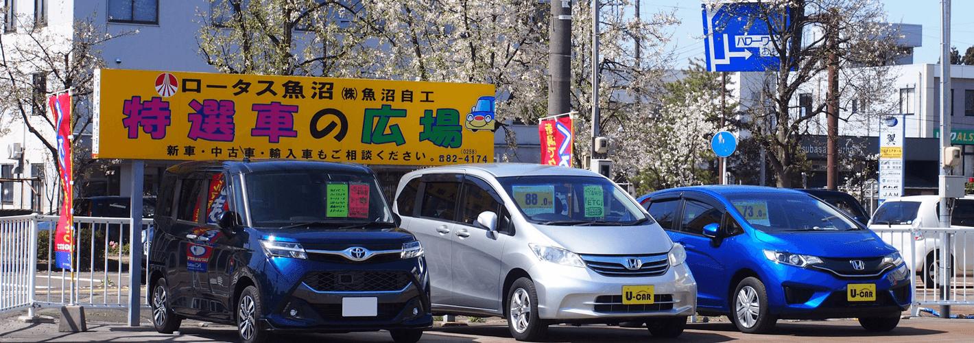 https://www.kurumaru.com/bridgeimg/11720/中古車展示場