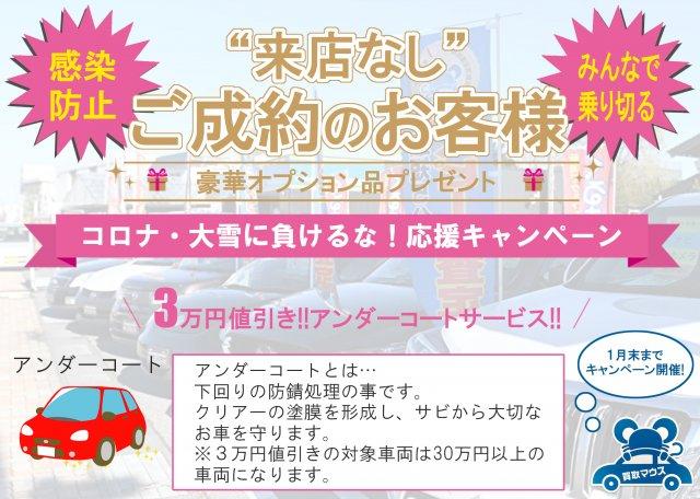 1月限定キャンペーン!!3万円値引き+アンダーコートサービス☆